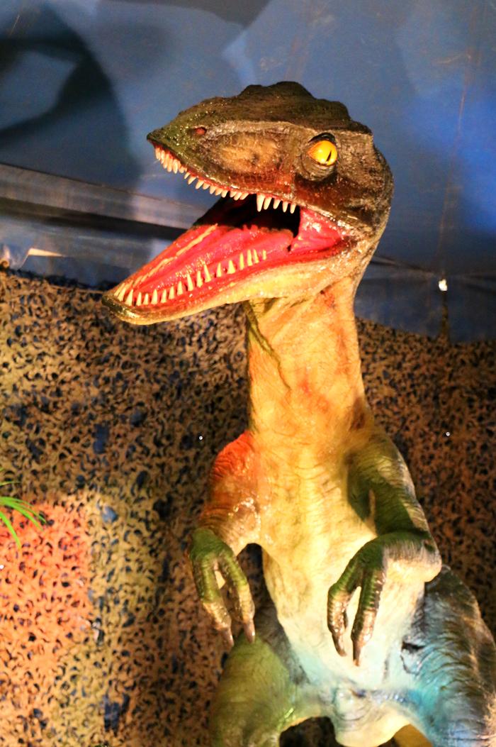 monde_dinosaures_11