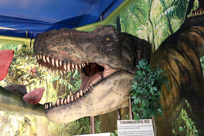 monde_dinosaures_12