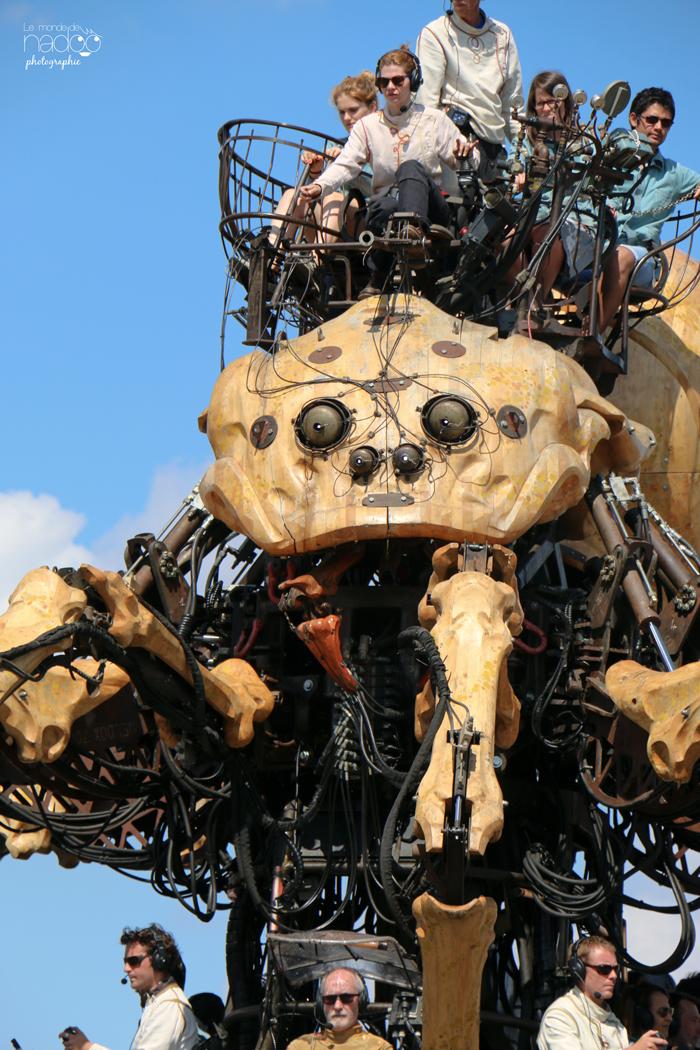 machines_kumo_19